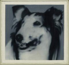 Hundekopf (Lassie)