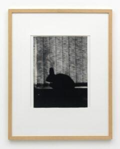 """Ohne Titel (aus der Edition zur Ausstellung """"Medium Fotografie"""")"""