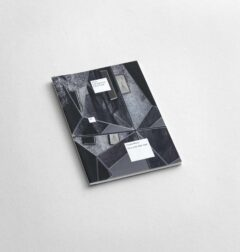 Claudia Wieser - Poems of the Right Angle