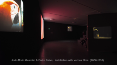 João Maria Gusmão & Pedro Paiva – EYE Filmmuseum