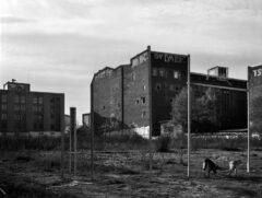 Building Berlin (Köpenicker 1)