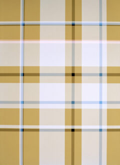 White, blue and black stripes on indian yellow background