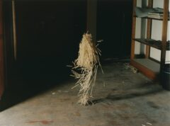Body of straw