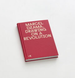 Drawing on a Revolution