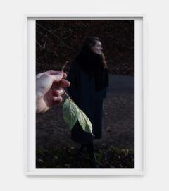 Johanna, branches